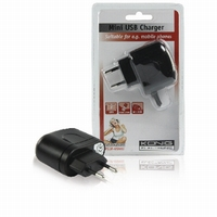 Mini USB thuislader 2000mA.